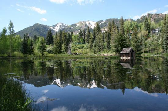 hallam-lake-spring