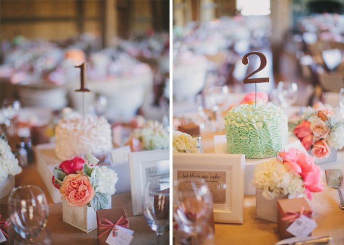 dtr9 Lauren and Nates whimsical Devils Thumb Ranch Wedding